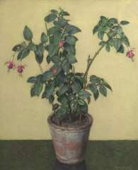 Wouters W.H.M. - Fuchsia in a flower pot, oil on canvas 61.5 x 50.7 cm, signed l.r.