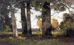Bock T.E.A. de - Beech wood by Renkum, oil on canvas 50 x 75.7 cm, signed l.r.