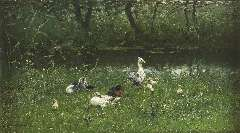 Maris W. - Ducks and ducklings by the waterside, oil on canvas 23.5 x 41.3 cm, signed l.l.