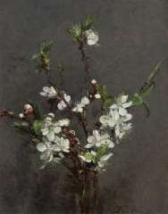 Fantin-Latour I.H.J.T. - Blossom branches, oil on canvas 27 x 21.2 cm, signed l.r. and dated '73