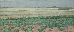 Breman A.J. - Summer landscape with potatofields in the Gooi region, oil on canvas 18.7 x 40.5 cm, signed l.r. and dated 'L 1 7 1903'