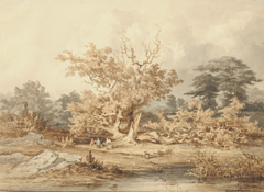 Kuytenbrouwer II M.A. - View of a pond in Fontainebleau forest, brown ink, black chalk and watercolour on paper 24.6 x 34 cm, signed l.r.